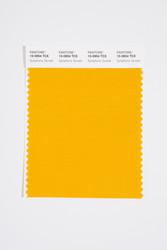 Pantone Smart 15-0954 TCX Color Swatch Card, Symphonic Sunset