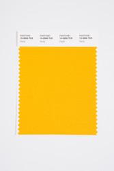 Pantone Smart 15-0956 TCX Color Swatch Card, Daylily