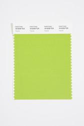Pantone Smart 16-0229 TCX Color Swatch Card, Titanite