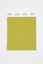 Pantone Smart 16-0531 TCX Color Swatch Card, Perfect Pear