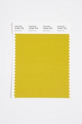 Pantone Smart 16-0541 TCX Color Swatch Card, Green Envy