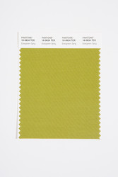 Pantone Smart 16-0634 TCX Color Swatch Card, Evergreen Sprig