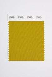 Pantone Smart 16-0640 TCX Color Swatch Card, Avocado Oil