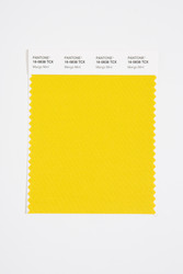 Pantone Smart 16-0838 TCX Color Swatch Card, Mango Mint