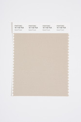 Pantone Smart 16-1102 TCX Color Swatch Card, Island Fossil
