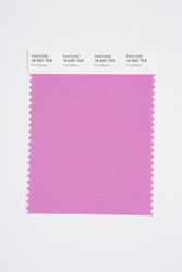 Pantone Smart 16-3321 TCX Color Swatch Card, First Bloom