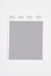 Pantone Smart 16-3917 TCX Color Swatch Card, Chiseled Stone