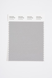 Pantone Smart 16-5102 TCX Color Swatch Card, Formal Gray