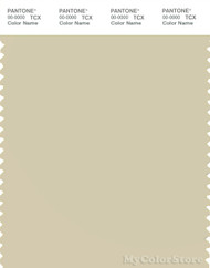 PANTONE SMART 13-1007X Color Swatch Card, Oyster White
