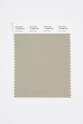 Pantone Smart 17-0208 TCX Color Swatch Card, Dried Sage