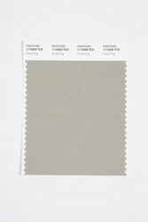 Pantone Smart 17-0209 TCX Color Swatch Card, Forest Fog