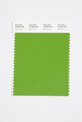 Pantone Smart 17-0232 TCX Color Swatch Card, Salted Lime