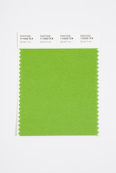 Pantone Smart 17-0332 TCX Color Swatch Card, Spindle Tree