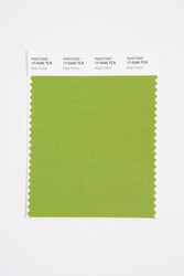 Pantone Smart 17-0340 TCX Color Swatch Card, Kelp Forest