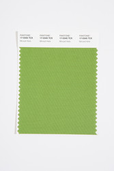 Pantone Smart 17-0345 TCX Color Swatch Card, Minced Herb