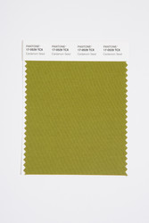 Pantone Smart 17-0529 TCX Color Swatch Card, Cardamom Seed