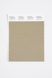 Pantone Smart 17-0619 TCX Color Swatch Card, Overland Trek