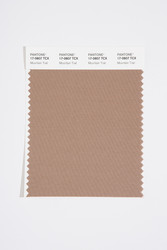 Pantone Smart 17-0807 TCX Color Swatch Card, Mountain Trail