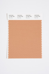 Pantone Smart 17-1221 TCX Color Swatch Card, Macchiato