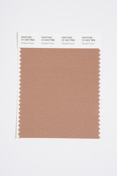 Pantone Smart 17-1317 TCX Color Swatch Card, Sinopia Fresco