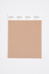 Pantone Smart 17-1318 TCX Color Swatch Card, Affogat
