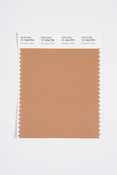 Pantone Smart 17-1324 TCX Color Swatch Card, Cinnamon Swirl