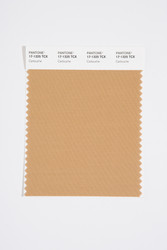 Pantone Smart 17-1325 TCX Color Swatch Card, Cartouche