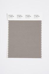 Pantone Smart 17-1508 TCX Color Swatch Card, Silent Storm