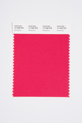 Pantone Smart 17-1640 TCX Color Swatch Card, Winterberry