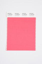 Pantone Smart 17-1746 TCX Color Swatch Card, Coral Paradise