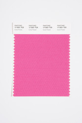 Pantone Smart 17-2521 TCX Color Swatch Card, Cone Flower