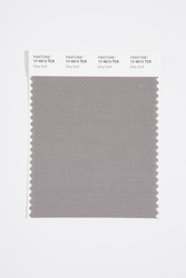 Pantone Smart 17-4013 TCX Color Swatch Card, Gray Quill