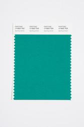 Pantone Smart 17-5527 TCX Color Swatch Card, Sporting Green
