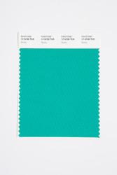 Pantone Smart 17-5730 TCX Color Swatch Card, Slushy