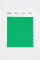 Pantone Smart 17-6154 TCX Color Swatch Card, Green Bee
