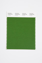 Pantone Smart 18-0226 TCX Color Swatch Card, Courtyard
