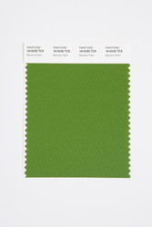Pantone Smart 18-0230 TCX Color Swatch Card, Banana Palm