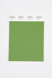 Pantone Smart 18-0323 TCX Color Swatch Card, Campsite