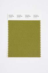 Pantone Smart 18-0428 TCX Color Swatch Card, Peat Moss