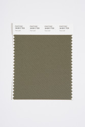 Pantone Smart 18-0517 TCX Color Swatch Card, Tea Leaf