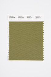 Pantone Smart 18-0529 TCX Color Swatch Card, Sphagnum