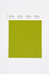 Pantone Smart 18-0537 TCX Color Swatch Card, Golden Cypress