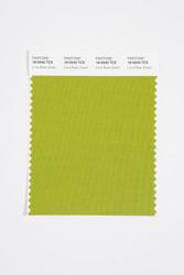 Pantone Smart 18-0540 TCX Color Swatch Card, Lima Bean Green