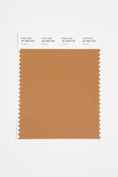 Pantone Smart 18-1025 TCX Color Swatch Card, Foxtrot