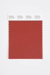 Pantone Smart 18-1323 TCX Color Swatch Card, Brandy Snifter