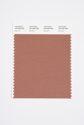Pantone Smart 18-1422 TCX Color Swatch Card, Myristica