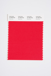 Pantone Smart 18-1563 TCX Color Swatch Card, Rubicondo