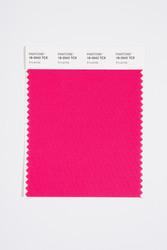 Pantone Smart 18-2042 TCX Color Swatch Card, Innuendo