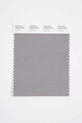 Pantone Smart 18-4017 TCX Color Swatch Card, Night Owl