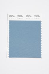 Pantone Smart 18-4221 TCX Color Swatch Card, Spring Lake